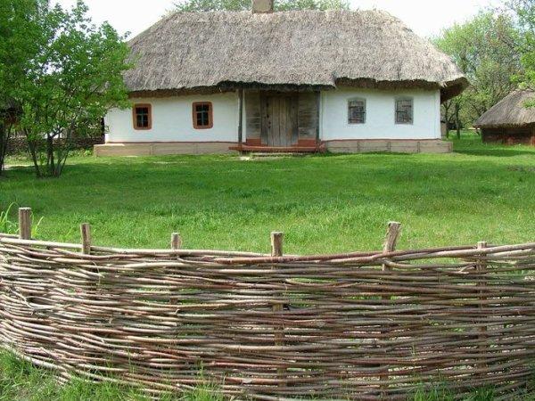 плетеный забор из ивы